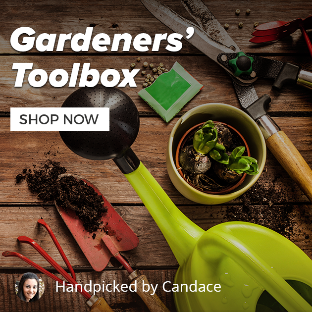 Gardeners toolbox   315x315 2x   v20160307
